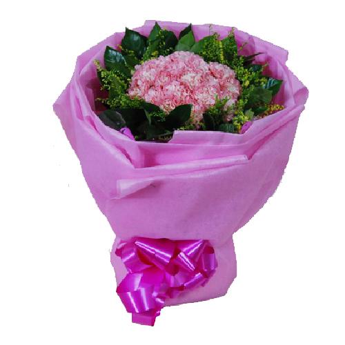 鲜花:郁金香